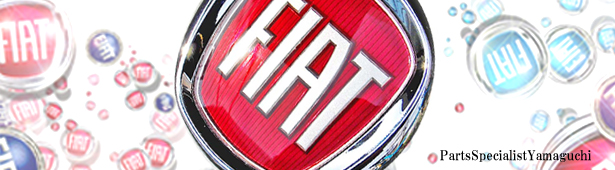 フィアット500 タイミングベルト交換 ,輸入車パーツ,FIAT500,0823-007.jpg