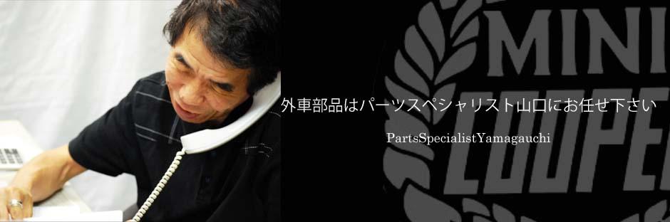 ローバーミニ,故障,交換,ウォーターポンプ,0909-002.jpg
